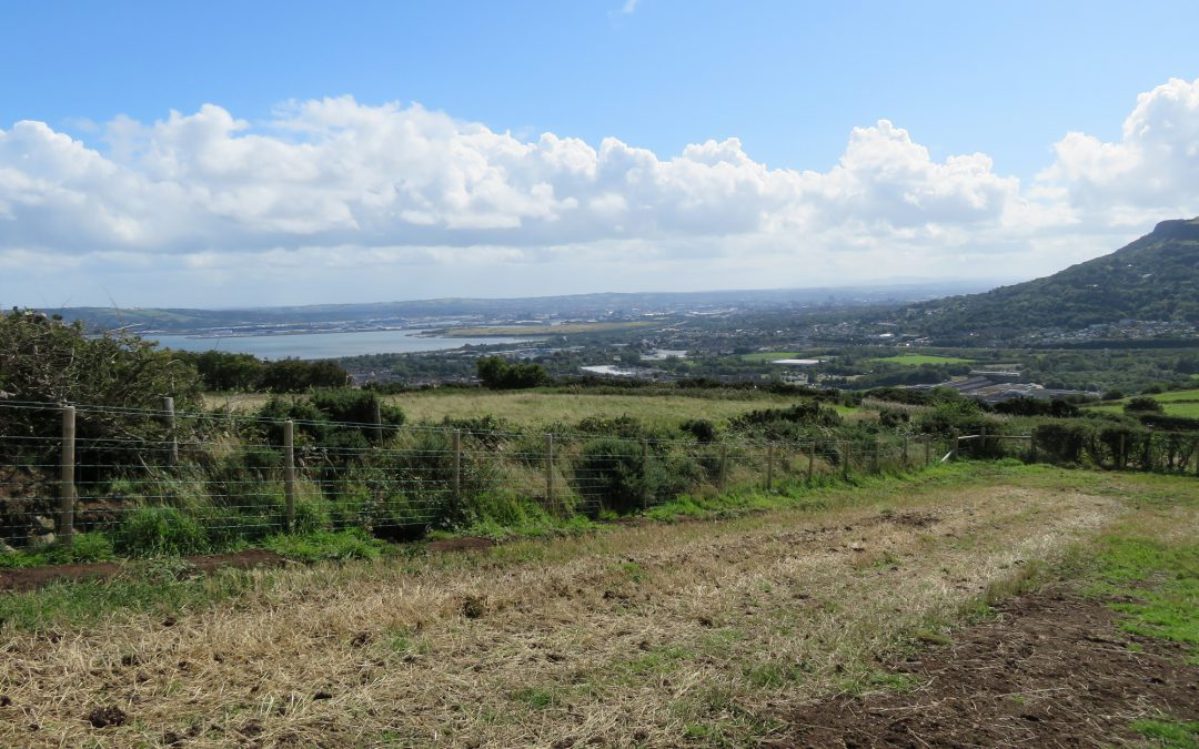 Feasibility Study for Carnmoney Hill Country Park