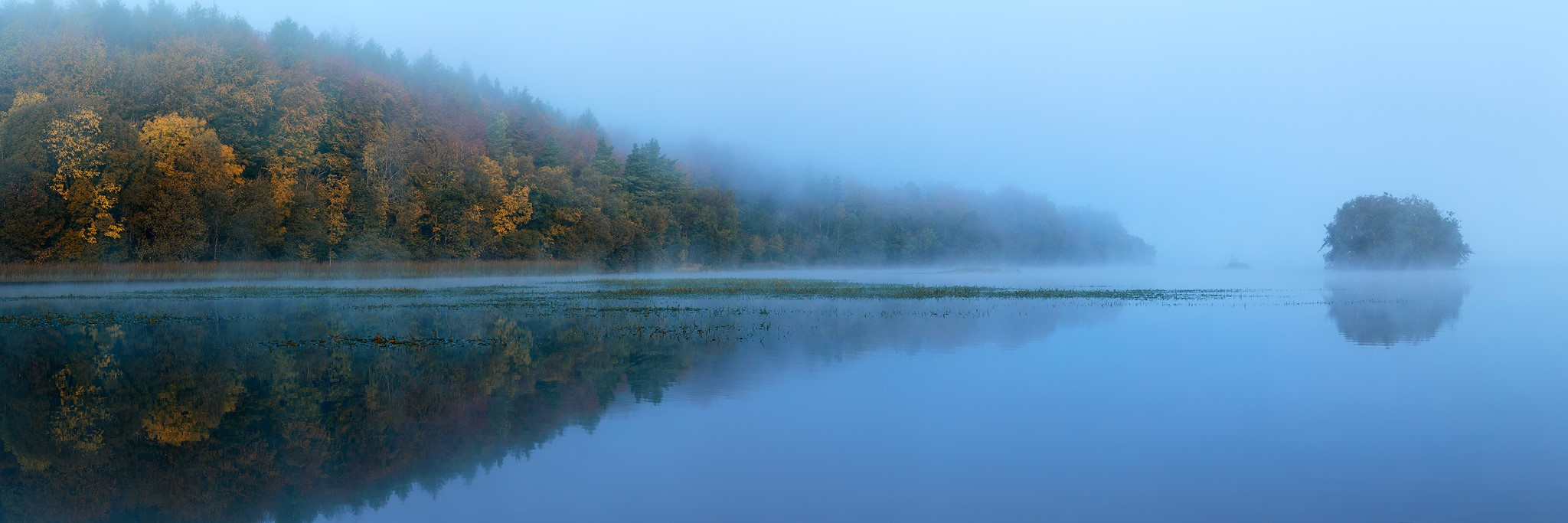 Ely Lodge Forest on the shores of lower lough erne